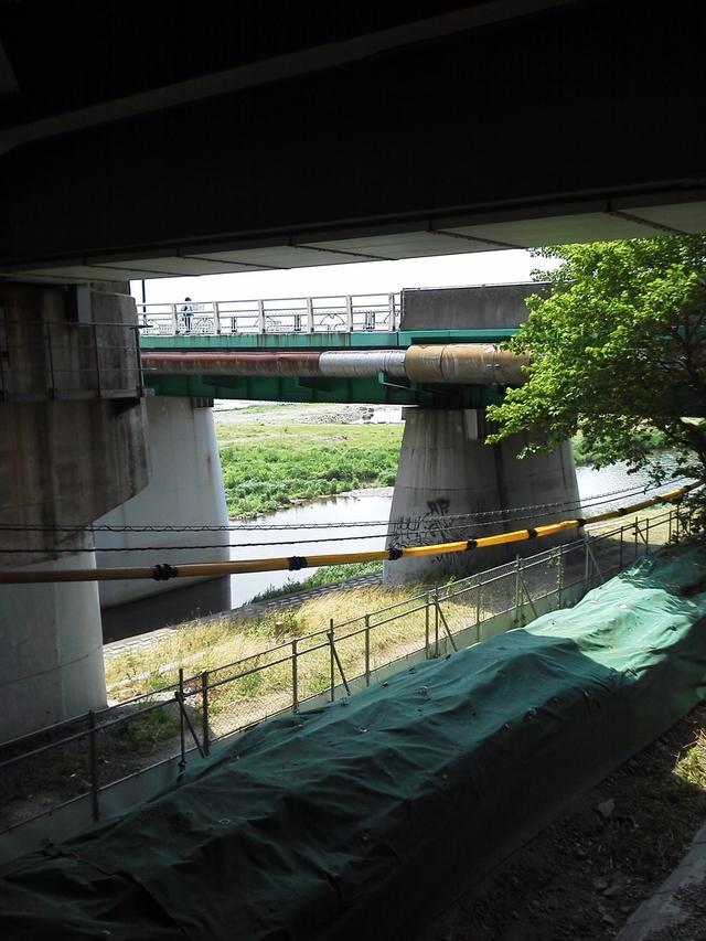 二子玉川駅から多摩川