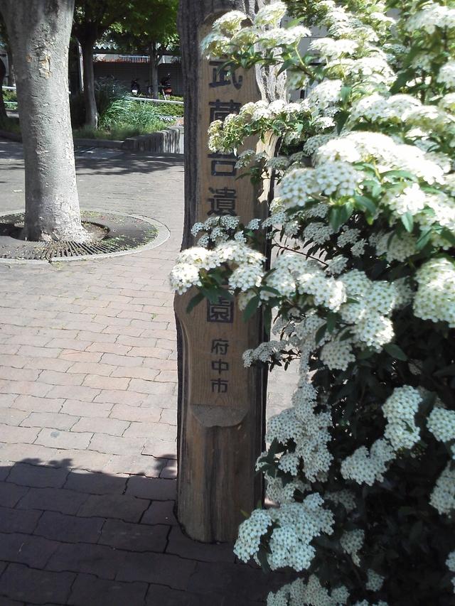 武蔵台遺跡公園