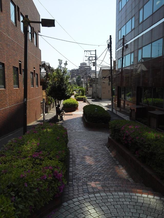 谷端川緑道