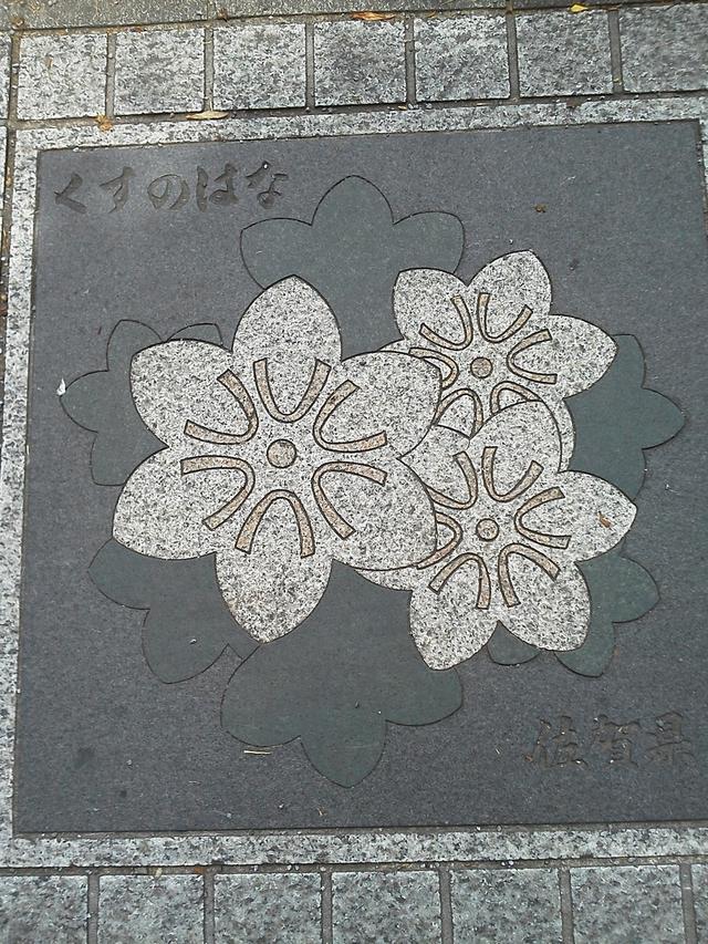 佐賀県の花の環