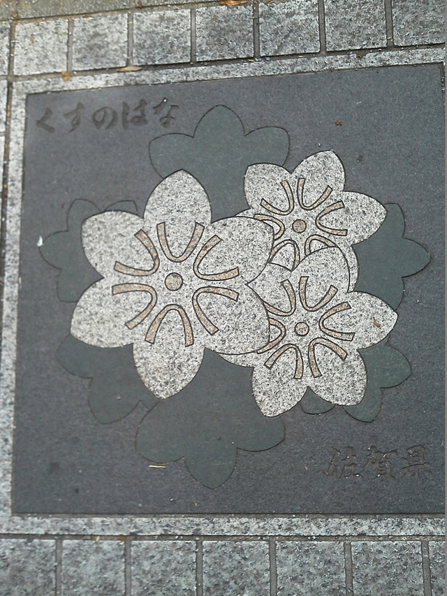 花の環 佐賀県