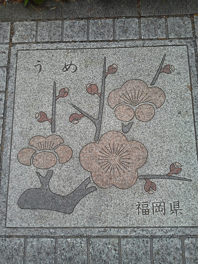 福岡県の花の環