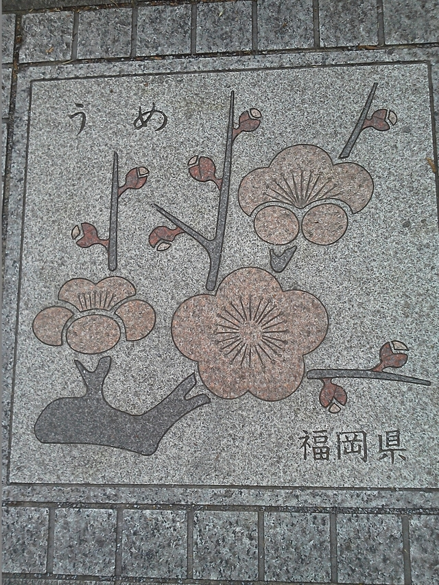 花の環 福岡県