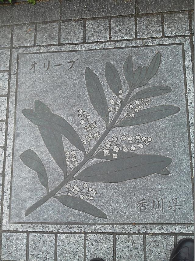 香川県の花の環