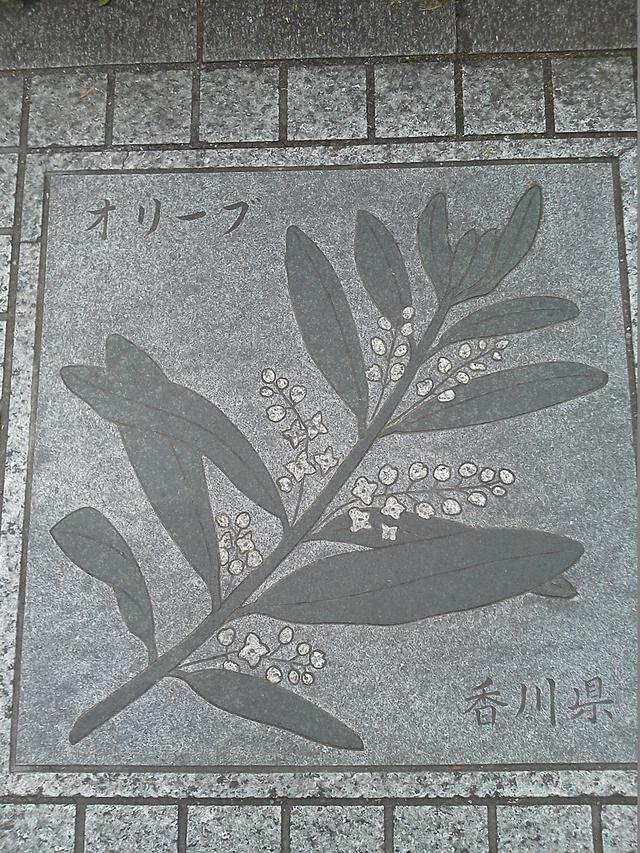 花の環 香川県
