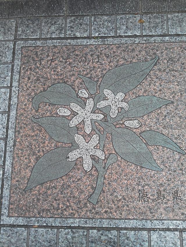 徳島県の花の環