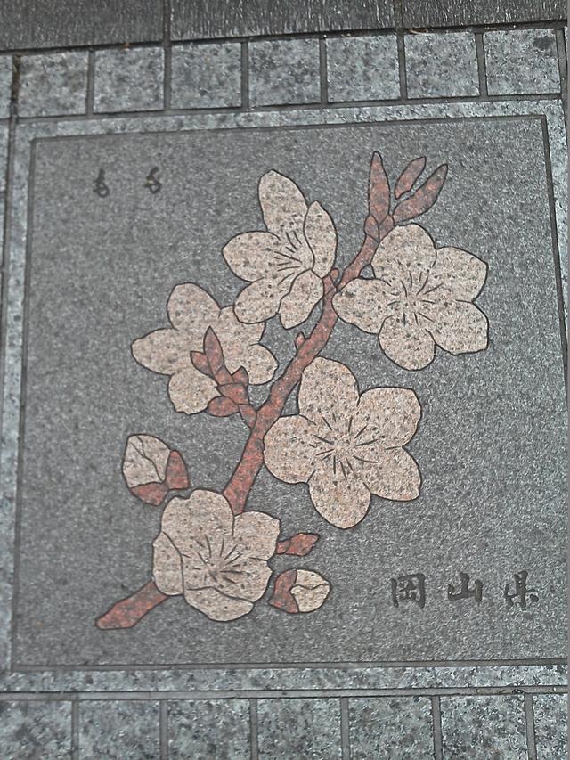 岡山県の花の環