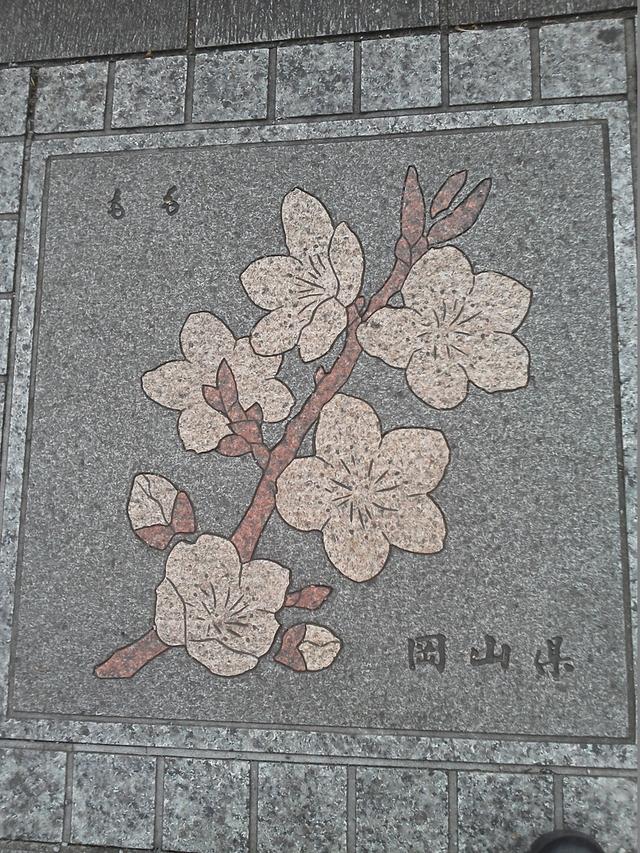花の環 岡山県