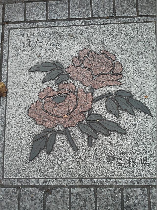 島根県の花の環