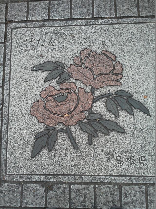 花の環 島根県