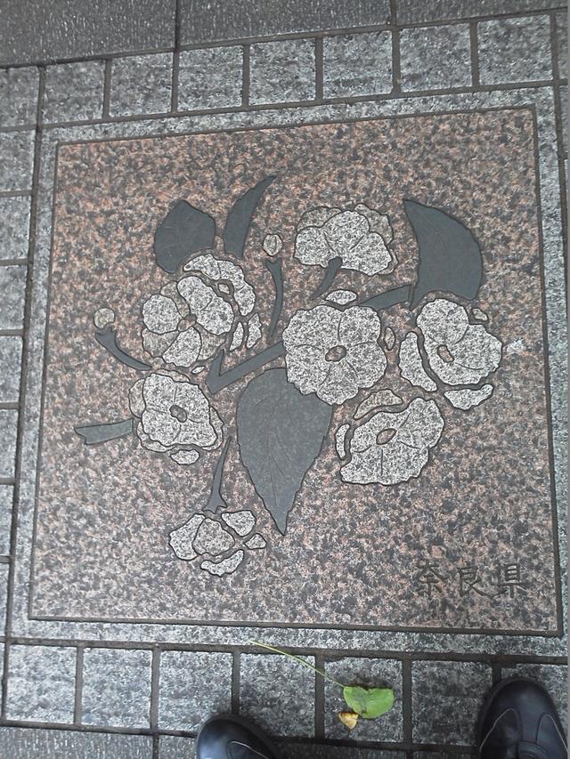 花の環 奈良県