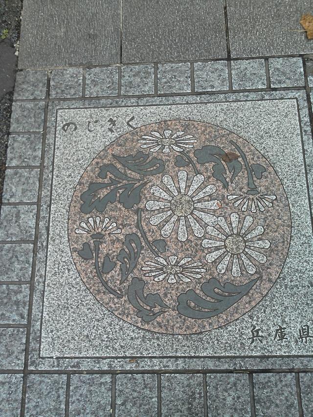 兵庫県の花の環