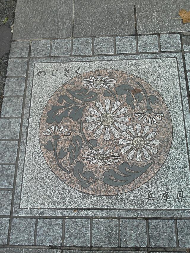 花の環 兵庫県