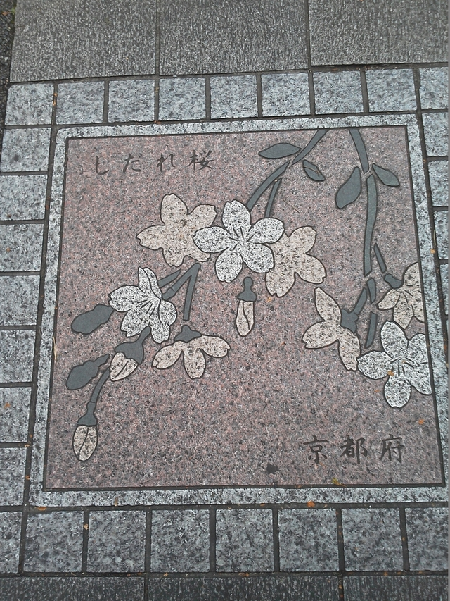 京都府の花の環