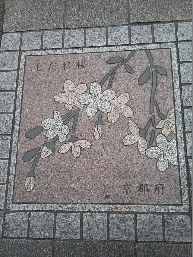 花の環 京都府