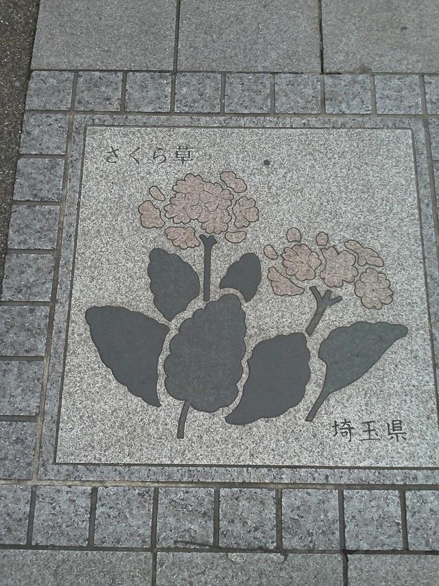 埼玉県の花の環