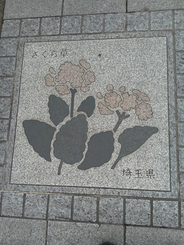 花の環 埼玉県