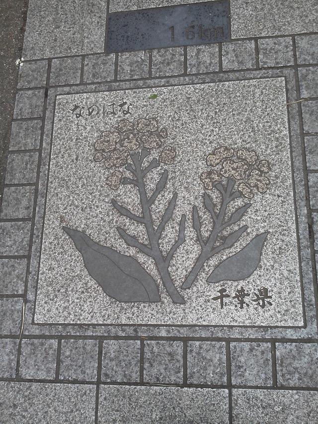 花の環 千葉県