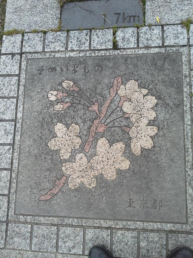 花の環 東京都