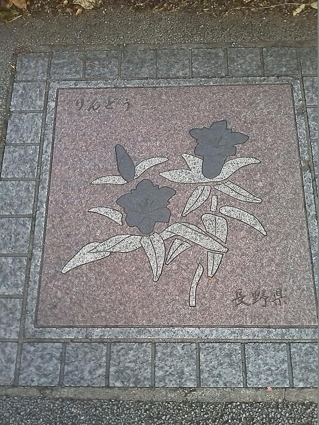 長野県の花の環