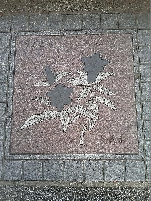 花の環 長野県