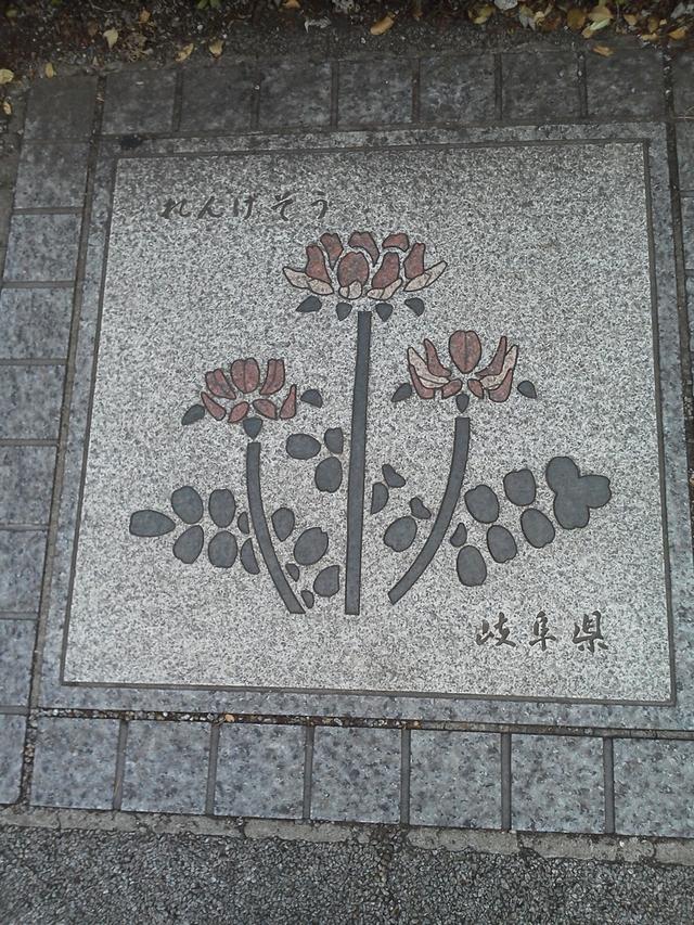 花の環 岐阜県