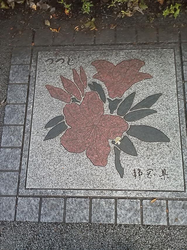 静岡県の花の環