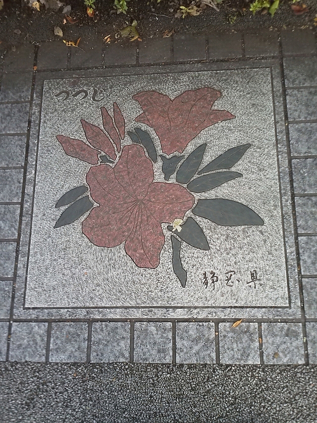 花の環 静岡県