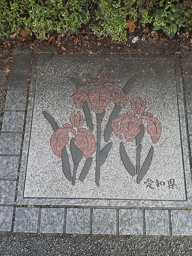 愛知県の花の環