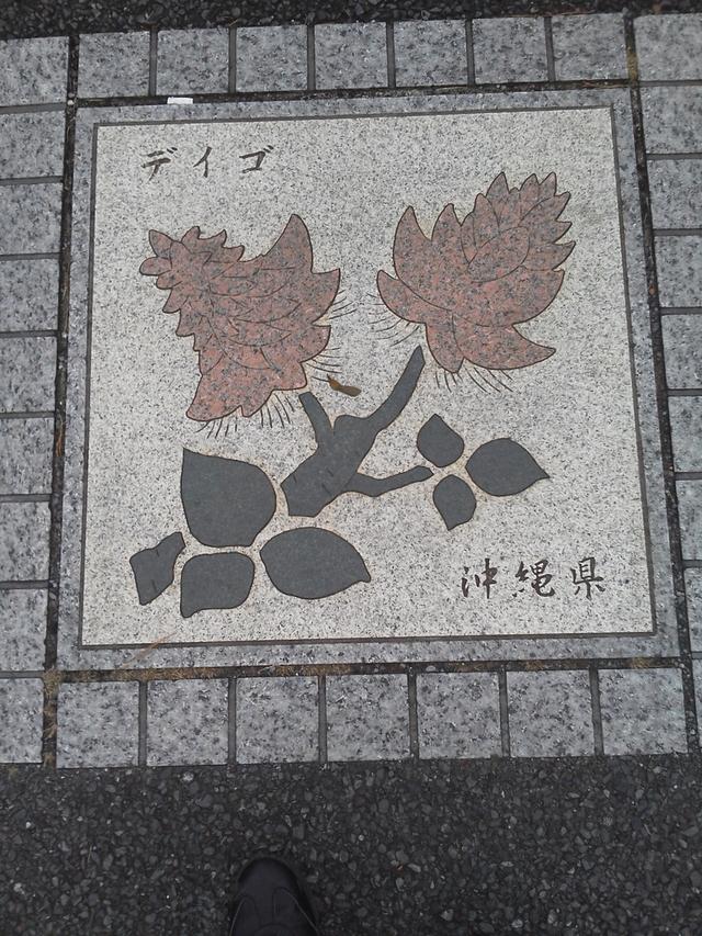 沖縄県の花の環