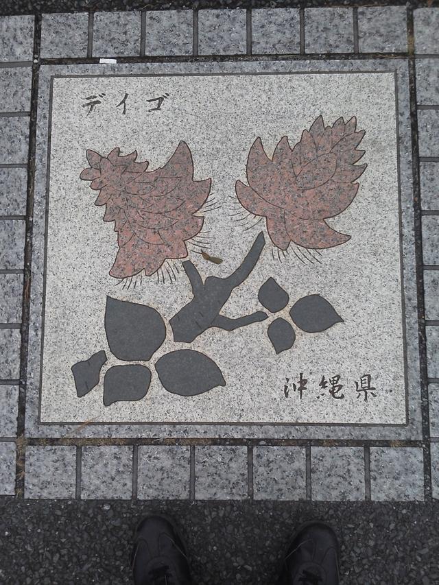 花の環 沖縄県