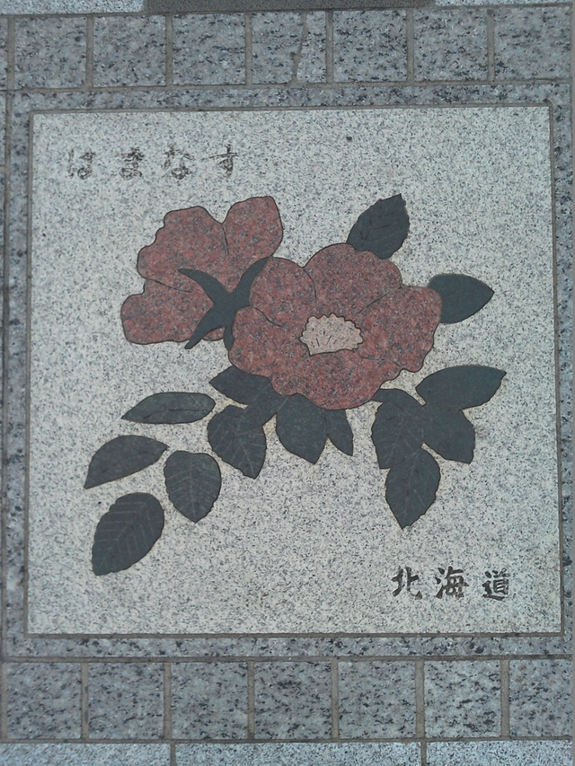 花の環 北海道