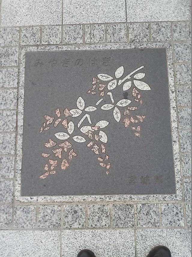 宮城県の花の環