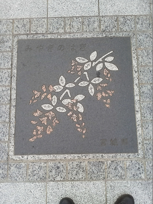 花の環 宮城県