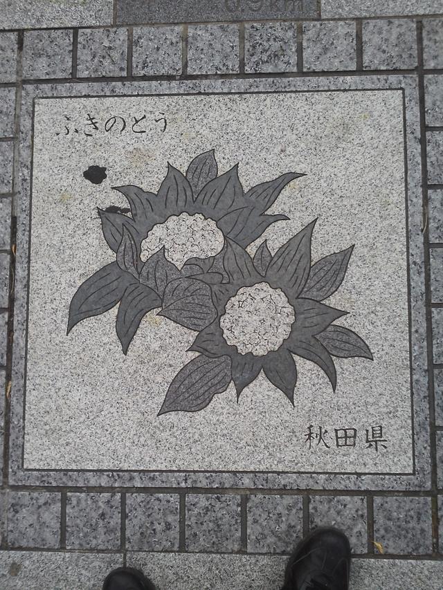 秋田県の花の環