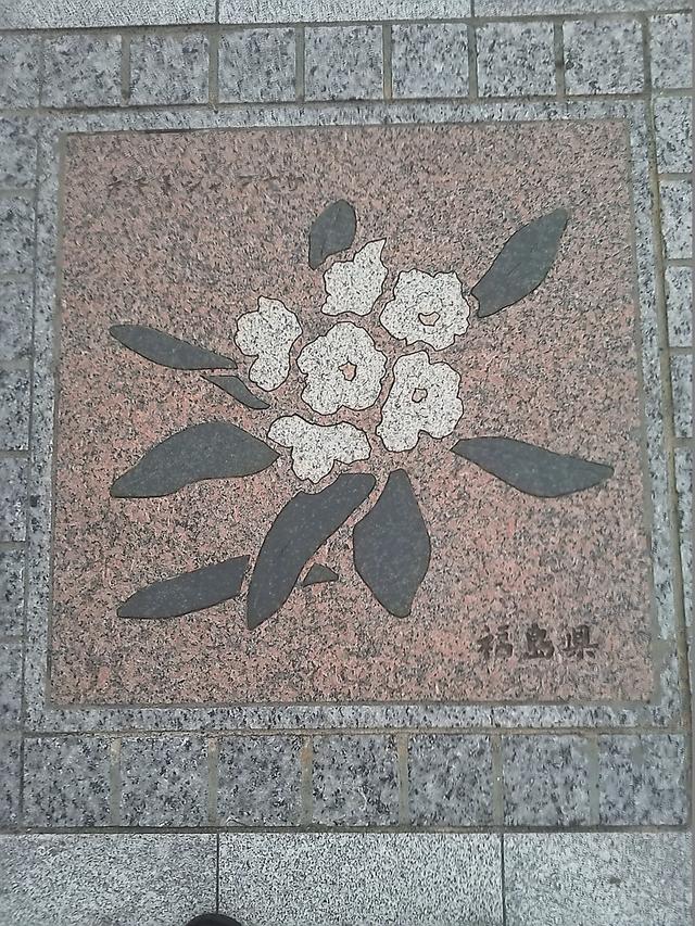 福島県の花の環