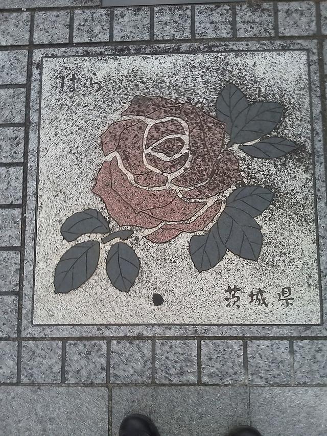 茨城県の花の環