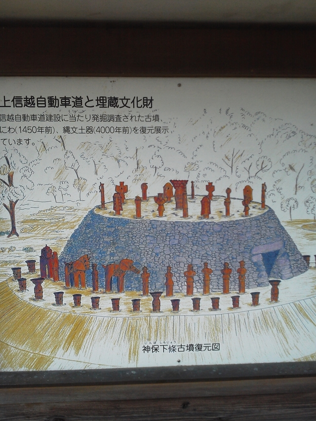 埋蔵文化財