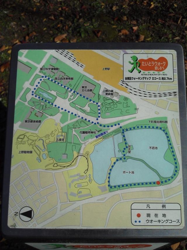 上野恩寵公園ボート池